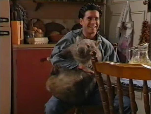 With Fatso the wombat on the set of A Country Practice.