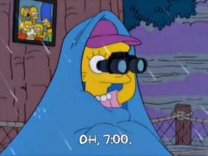 the-simpsons-lisa-the-tree-hugger-episode-1